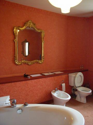 circus bathroom needs redecorating